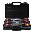 SCREWDRIVER SET 10pc TENG